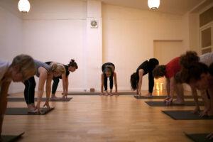 Hatha Yoga - Yoga 1a / Ehrenfeld